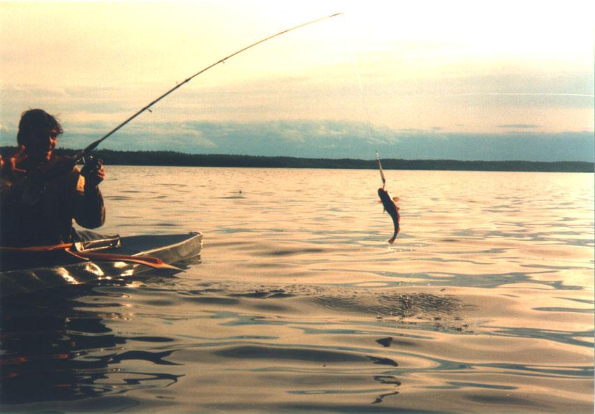 Рыбалка в краснодаре с берега