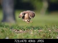 Нажмите на изображение для увеличения.  Название:PuyOhjuHvy0.jpg Просмотров:30 Размер:48.5 Кб ID:1038