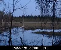 Нажмите на изображение для увеличения.  Название:P1020512.jpg Просмотров:13 Размер:225.6 Кб ID:3153