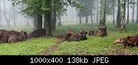 Нажмите на изображение для увеличения.  Название:slide-1-1000x400.jpg Просмотров:15 Размер:137.5 Кб ID:2277
