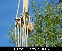 Нажмите на изображение для увеличения.  Название:DSCN0263.jpg Просмотров:3 Размер:105.4 Кб ID:2490