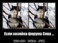 Нажмите на изображение для увеличения.  Название:bigu8mSuOFJAYMA.jpg Просмотров:36 Размер:364.8 Кб ID:1744