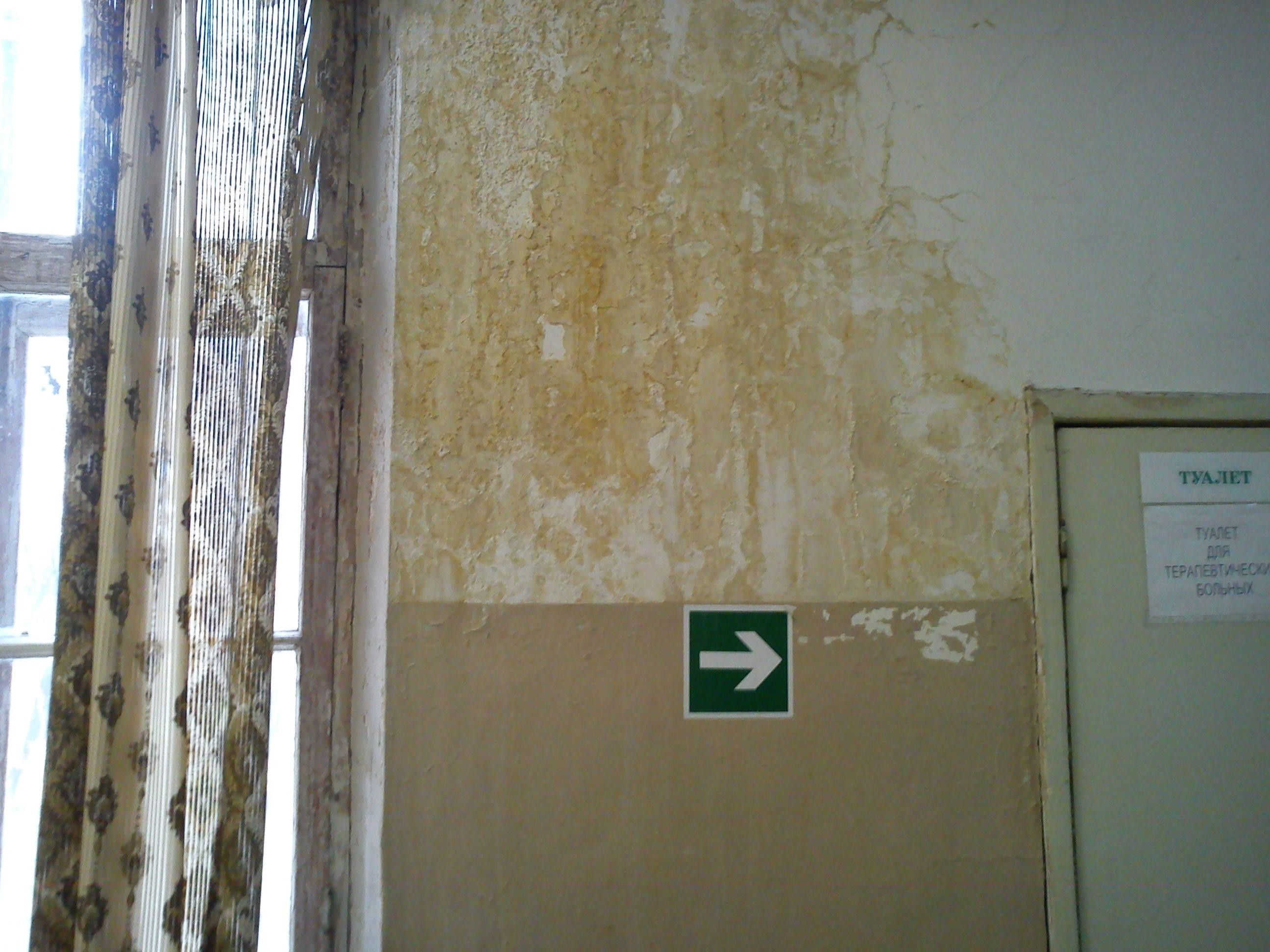 Фото скрытая в туалете девочек 11 фотография